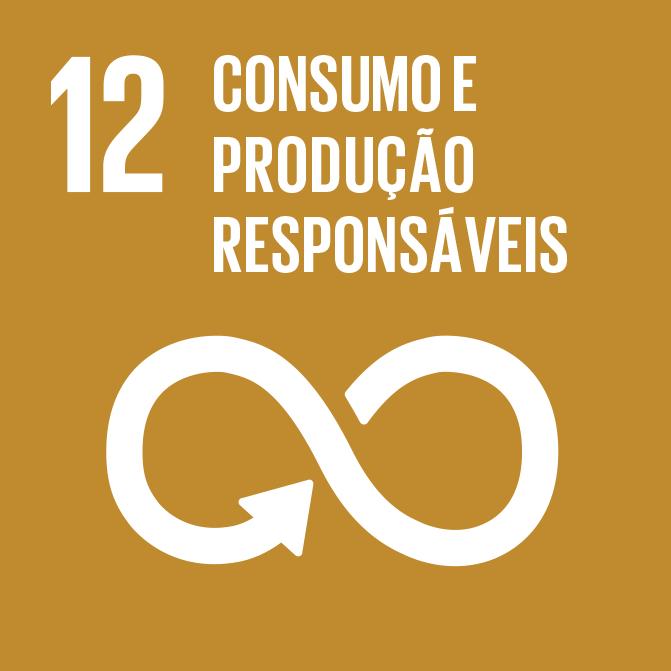 Icon_12_consumo-producao.png