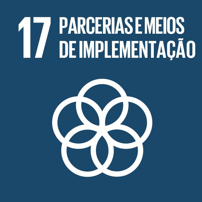 Icon_17_parcerias-e-meios.png